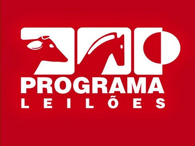 programaleiloes-640x480-2