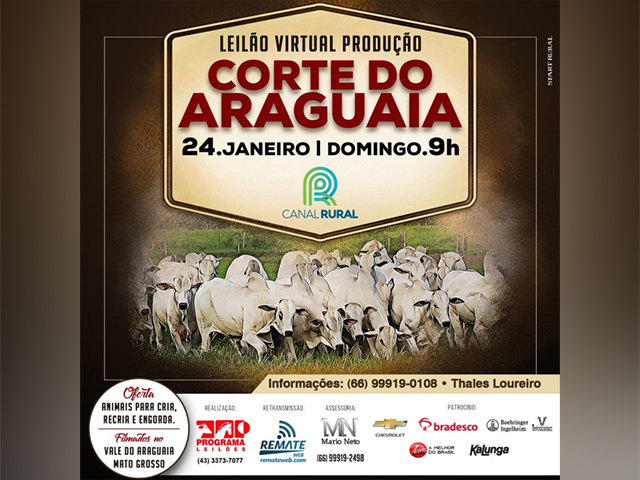 Leilao-Producao-Corte-do-Araguaia-24.01